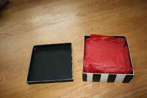Here's the box with the red scarf in red tissue paper. Suddenly, it's a lot more colorful!